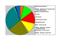 Winona Co Pie Chart No Text Version.pdf