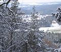 Winterwanderung prot Kirchenchor Alsenborn Hans Buch.JPG