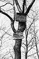Wood, board, hunting, hunting ground Fortepan 79524.jpg