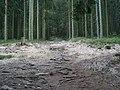 Wurmbergsteig 02.jpg