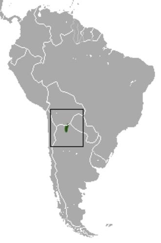 Yepes's mulita - Image: Yepes's Mulita area