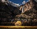 YosemiteFallsTreeLightup 16x20 SuperglossPrint.jpg