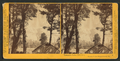 Yosemite Falls, 2630 feet, Yosemite Valley, Mariposa County, Cal, by Watkins, Carleton E., 1829-1916 6.png