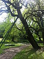 Zagreb botanic park 12.jpg