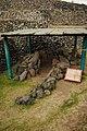 Zona arqueológica de Cuicuilco - Kiva 01.jpg