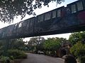 Zoo Miami Monorail (30971025974).jpg