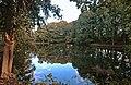 Zwickau Forest Park.jpg