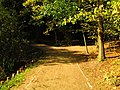 (PL) Polska - Warmia - Ścieżka nad jeziorem Długim w Lesie Miejskim w Olsztynie - Path on the Long Lake in the City Forest in Olsztyn (9.X.2012) - panoramio (14).jpg