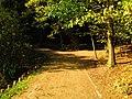 (PL) Polska - Warmia - Ścieżka nad jeziorem Długim w Lesie Miejskim w Olsztynie - Path on the Long Lake in the City Forest in Olsztyn (9.X.2012) - panoramio (14).jpg