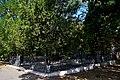 Братська могила 45-ти підпільників DSC 0281 01.jpg