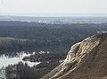 Вид с горы с. Селявное.jpg