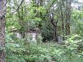 Вікіекспедиція в Чорнобиль 69.JPG