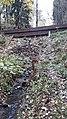 Гидротехнические сооружения. Вики-встреча 24.10.2020.jpg