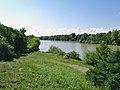 Гончарский дендрологический парк им. П.В. Букреева. Вид на озеро с холма.jpg