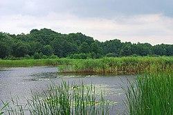 Голосіївський національний природний