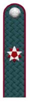 Государственный советник РФ 3 класса ФНС РФ.png
