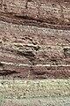 Грабовець - Відслонення нижнього девону - 15069492.jpg