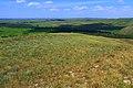 На горе Урсттау - panoramio.jpg