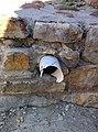 Област Монтана - Гр. Монтана - Антична крепост - Кастра ад Монтанезиум - (2).jpg