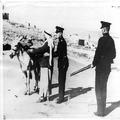 המאורעות בארץ ישראל 1937. חיפוש לנשק מחוץ לירושלים-PHL-1088018.png