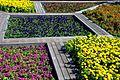ערוגות הפרחים ליד היכל התרבות.jpg