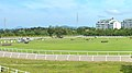 三木ホースランドパーク「エクウスの森 緑の広場」風景.JPG