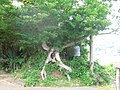 嵯峨の島お寺02 - panoramio.jpg