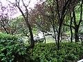 桂林市芦笛岩景区景色 - panoramio (12).jpg