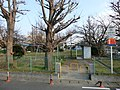 江戸川左岸 - panoramio.jpg