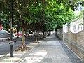 深圳景田东路 Jing Tian Dong Lu - panoramio.jpg