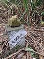 牛稠尾山 - panoramio (3).jpg