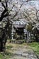 秋葉神社 - panoramio - suwakotaro.jpg