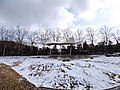 雪天的潍坊学院 2020-12-13 7.jpg