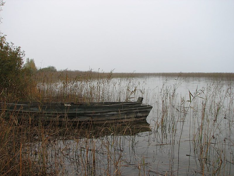 File:...autumn - panoramio - Gluuuum.jpg