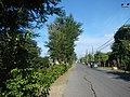 02936jfSabang Rice Fields Creeks San Rafael Roads Bulacanfvf 44.JPG