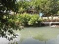 0296Views of Sipat irrigation canals 36.jpg