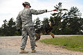131st Military Working Dog Detachment device detection training 130611-A-BS310-301.jpg