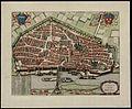 1682-Aurelia vernaculo Orliens.JPG