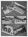 1913 Training Camp Scenes.jpg