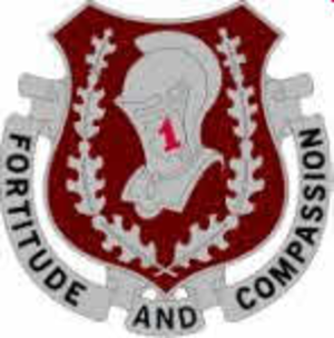 1st Medical Brigade (United States) - Image: 1 Medical Brigade DUI