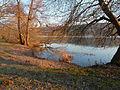 2012-03-01 17-44-06-etang-forges.jpg