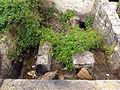 20130606 Mostar 078.jpg