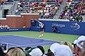 2013 US Open (Tennis) - Kevin Anderson (9651167740).jpg