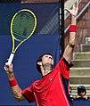 2013 US Open (Tennis) - Qualifying Round - James Ward (9715848928).jpg