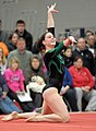 2015 District Championships West Geauga 23.jpg