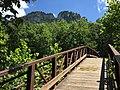2017-08-09 13 45 50 View of Seneca Rocks from the Seneca Rocks Trail bridge over the North Fork South Branch Potomac River in Seneca Rocks, Pendleton County, West Virginia.jpg