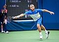 2017 US Open Tennis - Qualifying Rounds - Radu Albot (MDA) (27) def. Frank Dancevic (CAN) (36337903273).jpg