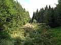 20180818425DR Olbernhau Naturschutzgebiet Pulvermühlenteich.jpg