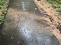 2021-07-09 16 17 59 Muddy storm water runoff crossing a walking path during heavy rain in the Franklin Glen section of Chantilly, Fairfax County, Virginia.jpg