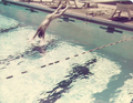 25 Meter pool diving well Plantation Country Club Louisville Kentucky.png